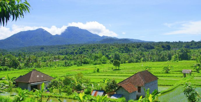 Explore the beautiful landscapes of Bali