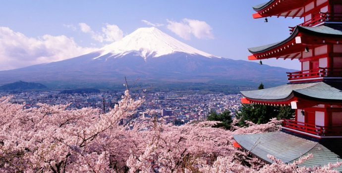 Admire the stunning views of Mount Fuji