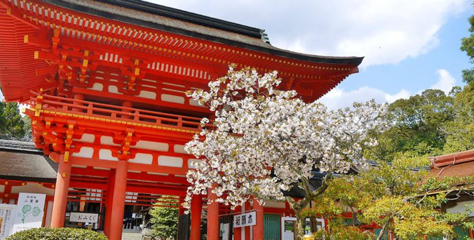 Bask in the beauty of Kyoto