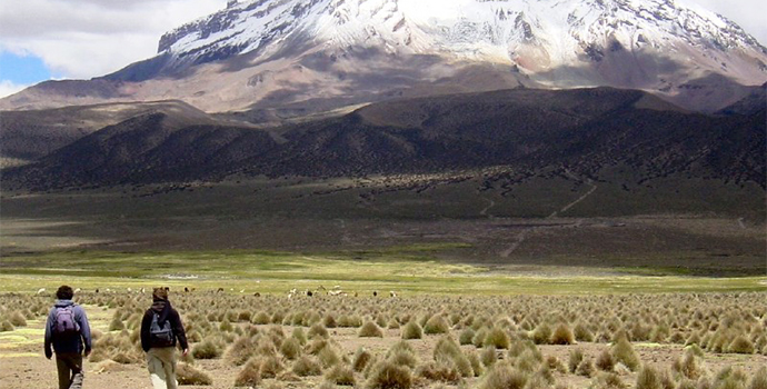 Marvel at the beautiful views in Sajama National Park